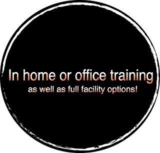 personal trainer, home, office, fitness, well-being, wellness